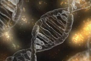 Update on genetics of PSC