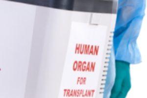 Liver Transplant Basics