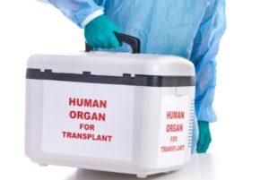 Livertransplant