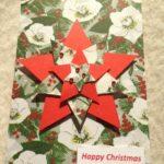 Christmas Rose Star