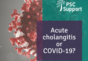 Acute cholangitis or COVID19 web